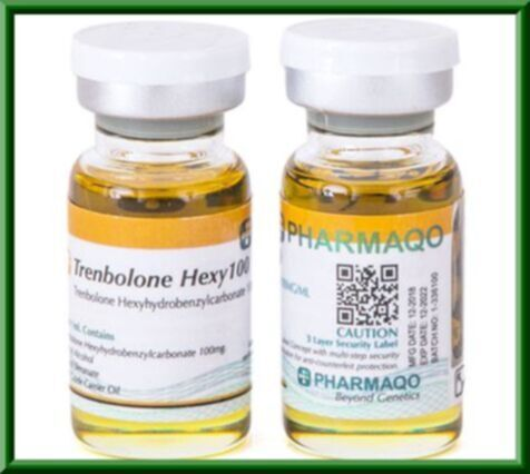Buy Trenbolone Hexy 100 by Pharmaqo Labs in USA online